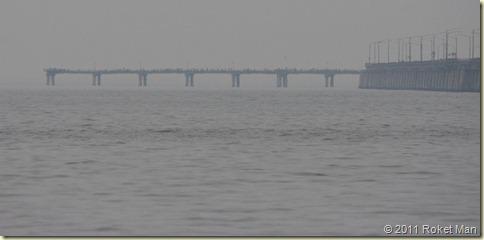 Sea Gull Pier 2